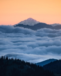 Glacier Peak rising above a sea of clouds during sunrise It is the most remote of the five active volcanoes in Washington State OC  ross_schram
