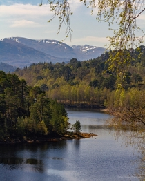 Glen Affric in the Scottish Highlands  Possibly the most beautiful Glen Ive ever visited