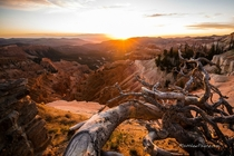 Glorious Sunset at Cedar Breaks National Monument Utah