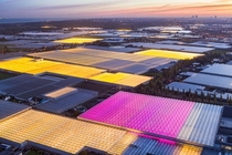 Glowing greenhouses in the Netherlands Photo by George Steinmetz