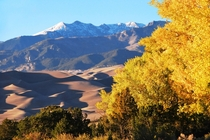 Gold Aspens Dunes and Cleveland Peak Colorado US  by National Park Service