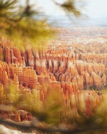 Golden Hour at Bryce Canyon Utah