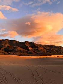 Golden Hour at Great Sand Dunes Colorado