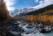Golden larches and high glacier-covered mountains make autumn in Switzerland look like paradise on earth