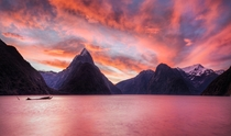 Good old Milford Sound New Zealand during a pink sunset yes real colors