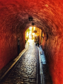 Goose Alley Stockholms Old Town Medieval Infrastructure  The tunnel formed under the superstructure has only  meters free height the lowest in the Old Town