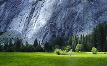 Gorgeous Meadow in Yosemite