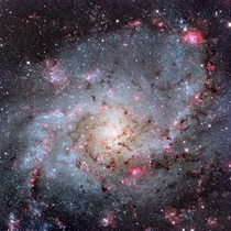 Gorgeous spiral galaxy M seems to have more than its fair share of glowing hydrogen gas A prominent member of the local group of galaxies M is also known as the Triangulum Galaxy and lies about  million light-years distant