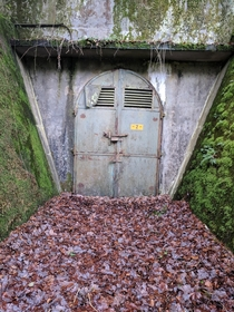 Got to explore some WW bunkers in Germany last time I visited my family