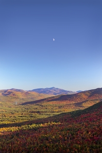 Gotta love when heaven and earth align- the moon setting over Mt Jo on a perfect fall evening