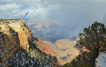 Grand Canyon Christmas morning
