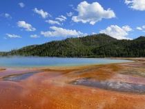 Grand Prismatic Spring Yellowstone National Park