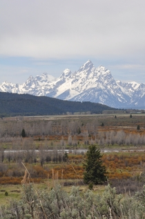Grand Teton from Turpin Meadow