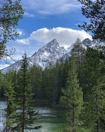 Grand Teton National Park from my road trip last month  IGcoreyraff