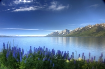 Grand Teton National Park Sure Heres mine