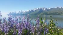 Grand Teton National Park WY Taken in June of