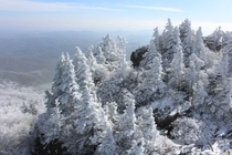 Grandfather Mountain Covered in Snow Today  by Kellen Short -