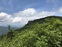 Grandfather Mountain NC Was a very pretty view but we had to do a  hour hike to get there