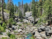 Granite Creek Sierra National Forest CA -
