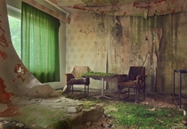 Grass growing in a damp living room  Photographed by Mario Mariburg