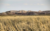 Grasslands and badlands in Petrified Forest National Park Arizona