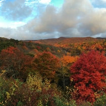 Graveyard Fields in the Fall North Carolina