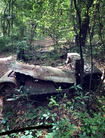 Graveyard of abandoned cars off a hiking trail in the woods Tallahasseeno roads no parking lots no explanation