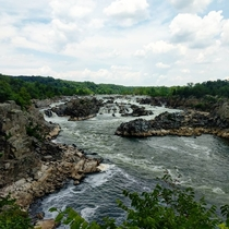 Great Falls on the Potomac June