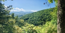 Great Smokey Mountains on the Laurel Falls trail