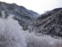 Great Smoky Mountains National Park after a winter storm