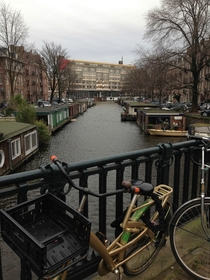 Green Amsterdam in January