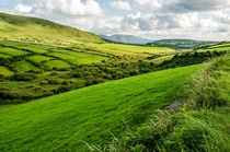 Green countryside on the Emerald Isle - Dingle Peninsula Ireland