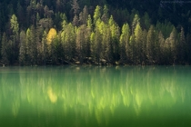 Green reflections in the Dolomites A little lake on the side of the road going to Tre Cime Veneto Region Italy
