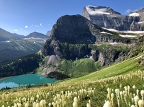 Grinnell Lake in Glacier National Park OC X
