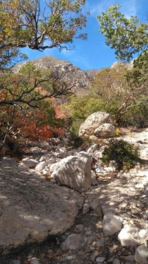 Guadalupe Mountains National Park Texas October