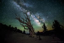 Guardian Of The Night The Milky Way above the White Mountains of California Photo by Michael Shainblum