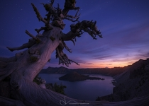 Guardian  Twilight at Crater Lake OR by TJ Thorne