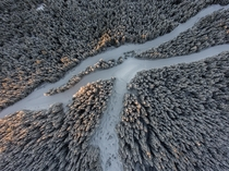Had a great time exploring with my drone this winter Whistler BC Canada