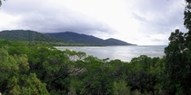 Had to climb a tree to get this one The only place where two UNESCO World Heritage Sites meet Daintree Forrest Great Barrier Reef