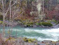Had to share the incredible contrasting colors of the Santiam River in Sweet Home Oregon OC