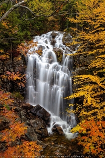 Hadlock Falls in Acadia National Park from back in October  IG jkputnamphoto