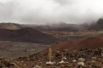 Haleakala NP looking like Mars