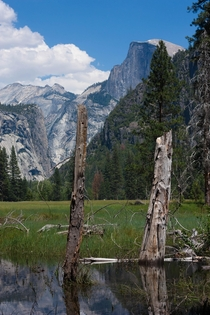 Half Dome in Yosemite Valley taken by me