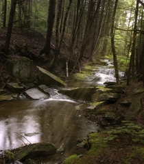 Halliday Brook  Vermont