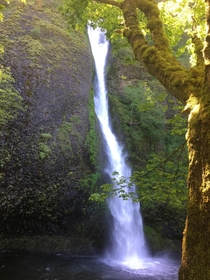 Happened upon this stunning waterfall along the Oregon Scenic Byway Horsetail Falls Columbia River Gorge Oregon