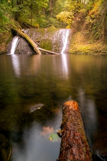 Hardly any water yet beautiful Twin Falls Silver Falls State Park Salem Oregon shot last year  - trip_with_hari