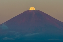 Harvest Moon over Mount Fuji - Shinichiro Saka