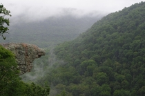 Hawksbill Crag in the Mist - Ozark National Forest - Arkansas