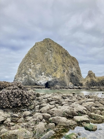 Haystack Rock at low tide Cannon Beach OR US