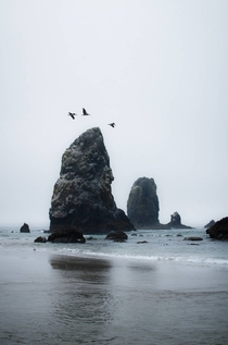 Haystack Rock Cannon Beach OR
